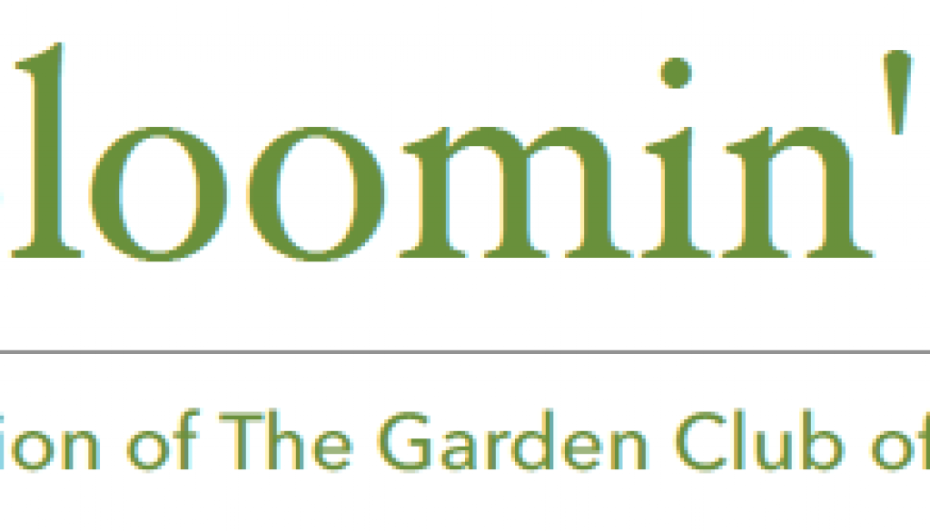 Bloomin News Headline
